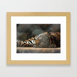 Lazy Kitten Framed Art Print