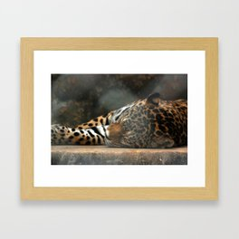 Lazy Kitten Framed Art Print