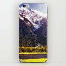 Pemberton iPhone Skin