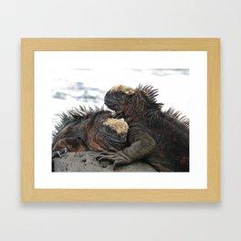Iguana Love Framed Art Print