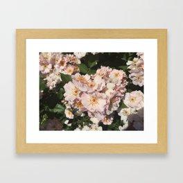 Summer Fresh Flowers Framed Art Print