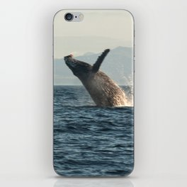 Breaching Whale Photography Print iPhone Skin