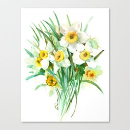 White Daffodils, spring flowers yellow green spring floral design Canvas Print