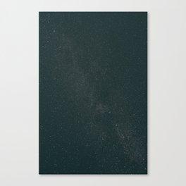 Starry Night II Canvas Print