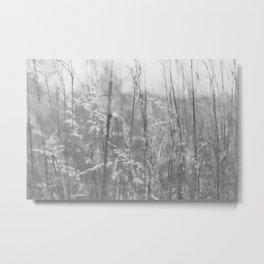 Prairie Metal Print