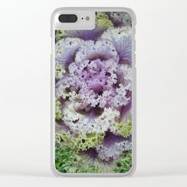 Little Cabbage Clear iPhone Case