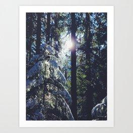 magic of winter  Art Print