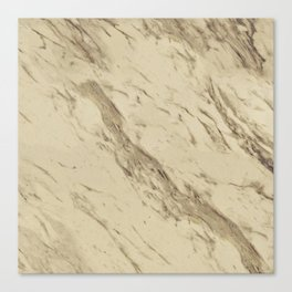 Desert Granite Canvas Print