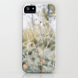 Forest (I) iPhone Case