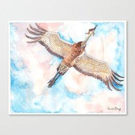 Test Flight Canvas Print