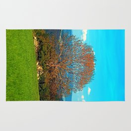 Lonely old tree in springtime scenery Rug