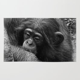 Baby Chimpanzee Cuddling Close to Mom Black and White Rug