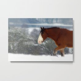 Horse in the snow Metal Print