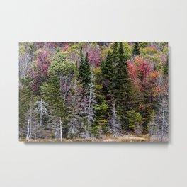 layers of trees Metal Print