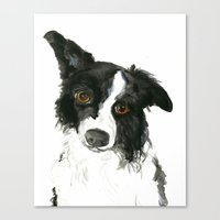 border collie Canvas Prints featuring Border Collie by Naomi Bardoff
