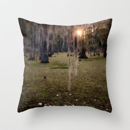 Witch's Hair at Sunrise on the Swamp Throw Pillow