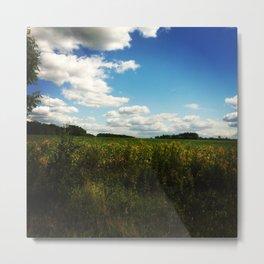 Blue Sky, Green Field Metal Print