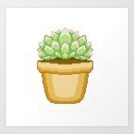 Cute Succulent Art Print
