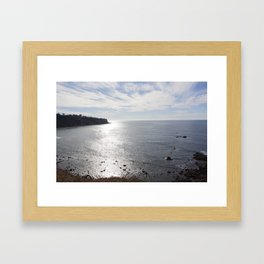 Rat Beach Framed Art Print
