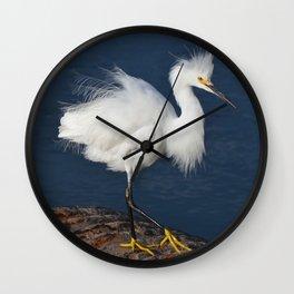 morning hair Wall Clock