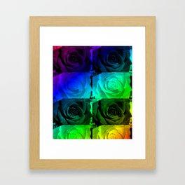 Rainbow Roses Framed Art Print
