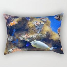 Photo 49 Aquarium Rectangular Pillow