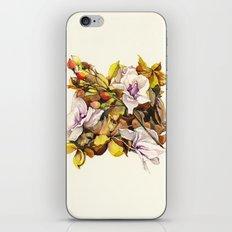Fallen Petals iPhone & iPod Skin