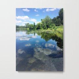 Minnesota Summertime Metal Print