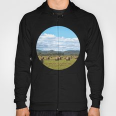 Hay bales on a sunny day Hoody