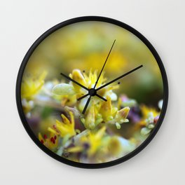 Yellow Sedum Wall Clock