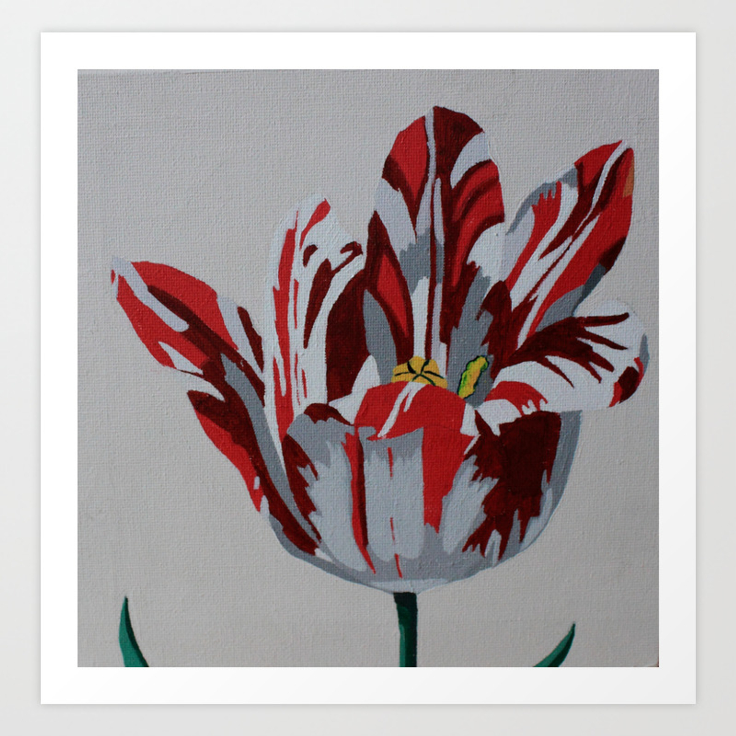 Red White Tulip Art Print By Marjolein Society6