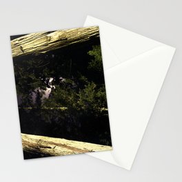 Moon light trees in Okunoin cemetery of Koyasan, Japan Stationery Cards