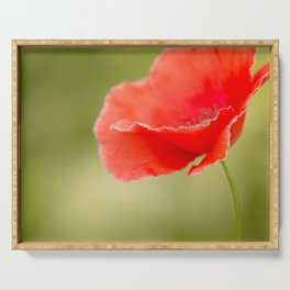 Miss you so much Red Poppy #decor #society6 Serving Tray