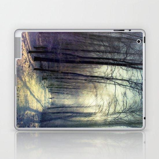 cold prism Laptop & iPad Skin