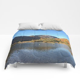 Crawford Notch-Fall Comforters