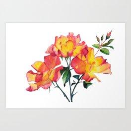 Cut Watercolor Tea Roses Art Print