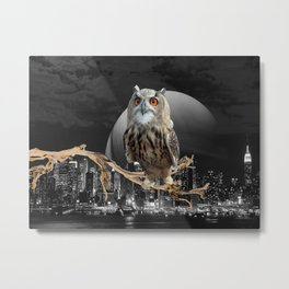 An Owl In The City Metal Print