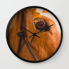 the horse's eye. Wall Clock