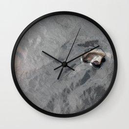 Sandbridge Shell Wall Clock