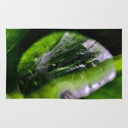 Dew Drop Rug