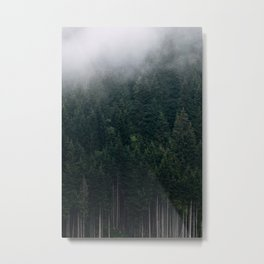 Mystic Pines - A Forest in the Fog Metal Print