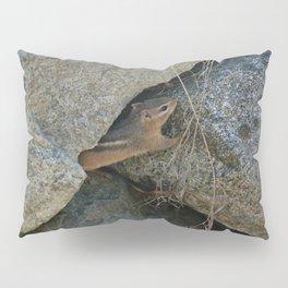 Chipmunk Pillow Sham
