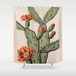 Botanical Cactus Shower Curtain