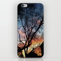 houston iPhone & iPod Skins featuring Houston Sunset by Veronika Hernandez