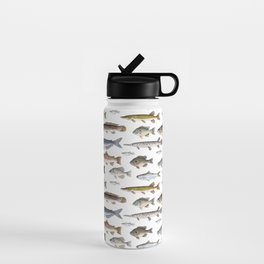 A Few Freshwater Fish Water Bottle