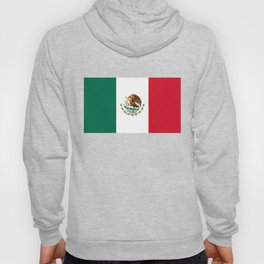 Mexican national flag Hoody