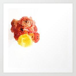 Ranunculus Bloom Art Print