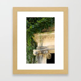 Ionic Ivy, Boston Framed Art Print
