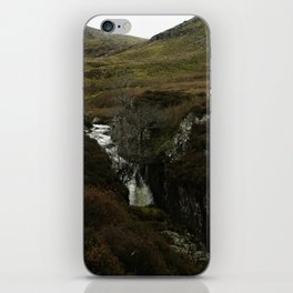 waterfall and tree iPhone Skin