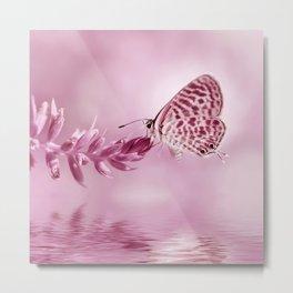 Butterfly 001 Metal Print